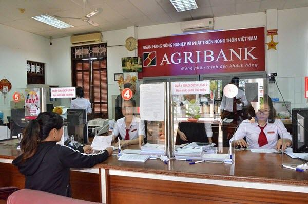 Vay tiền ngân hàng Agribank; khoản vay tới 300 triệu, 5 năm